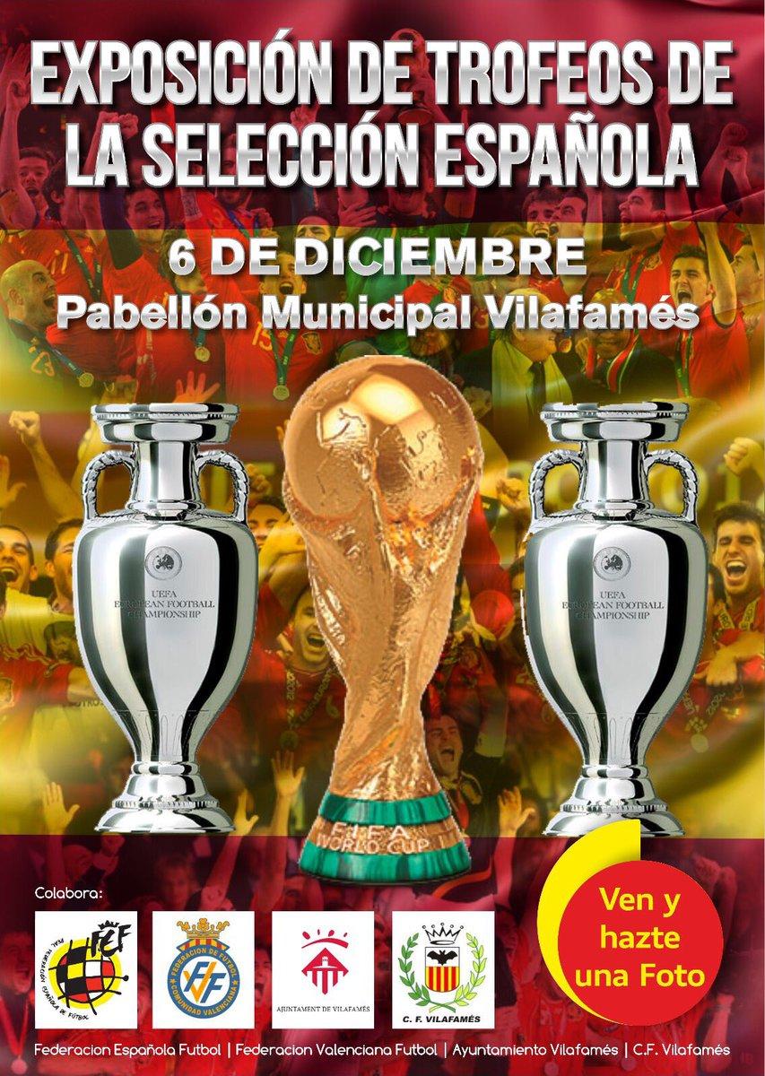 La copa del mundo vuelve a la comunidad valenciana ffcv for Federacion valenciana de futbol